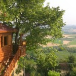 Top 10 Tree House Getaways Around the World in Photos
