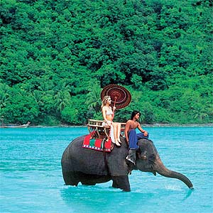 elephant-riding-thailand