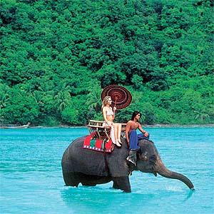 elephant-riding-thailand