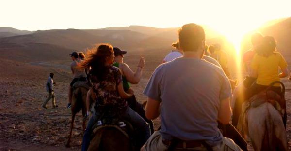 Camel Rides at Kfar Hanokdim