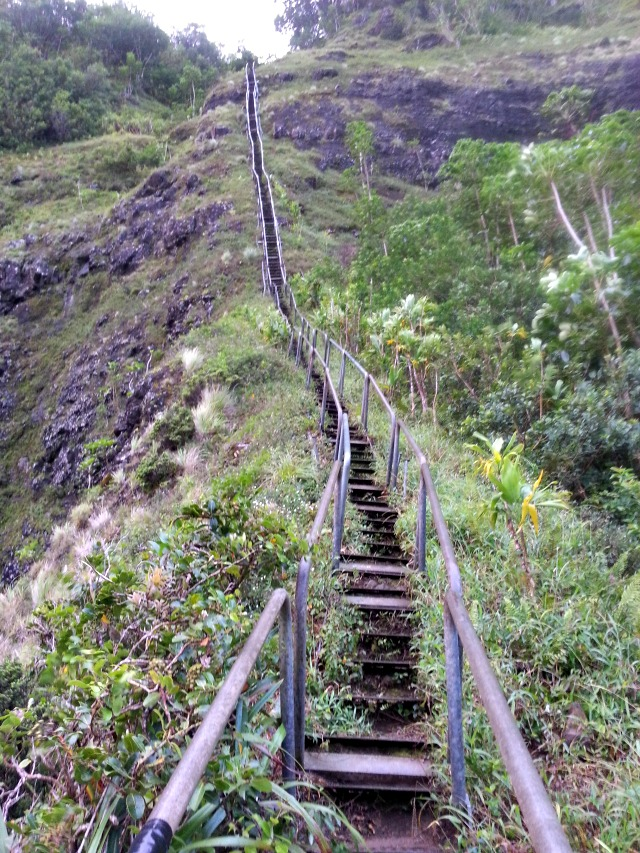 Hiking the Stairway to Heaven Hawaii | Swoon Divers Travel